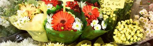 marche-fleurs-madeleine