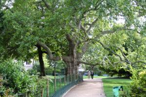 Parijs_parc-monceau