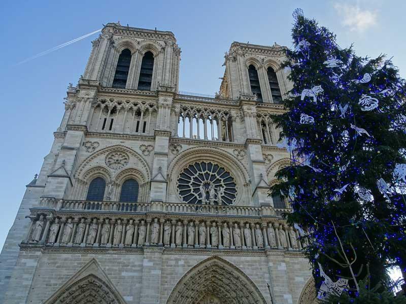 Kerststal en kerstboom bij de Notre Dame in Parijs